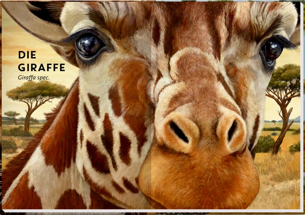 Lebensgroß - Wilde Tiere Afrikas