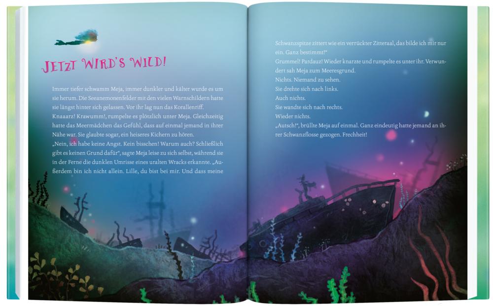 Meja Meergrün und das versunkene Schiff (Bd. 3)