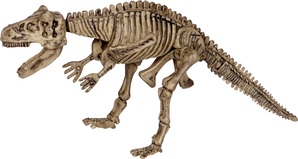 Ausgrabungsset Carnotaurus T-Rex World (ca.18x7x4 cm)