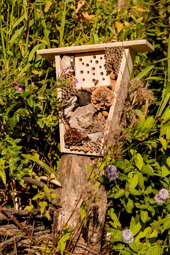 Insektenhotel Bausatz Nature Zoom