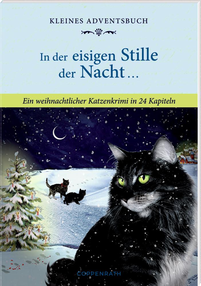In der eisigen Stille der Nacht ..., Adventskalender-Buch (Behr)