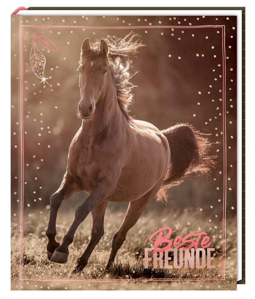 Freundebuch I LOVE HORSES - Beste Freunde (Foto)