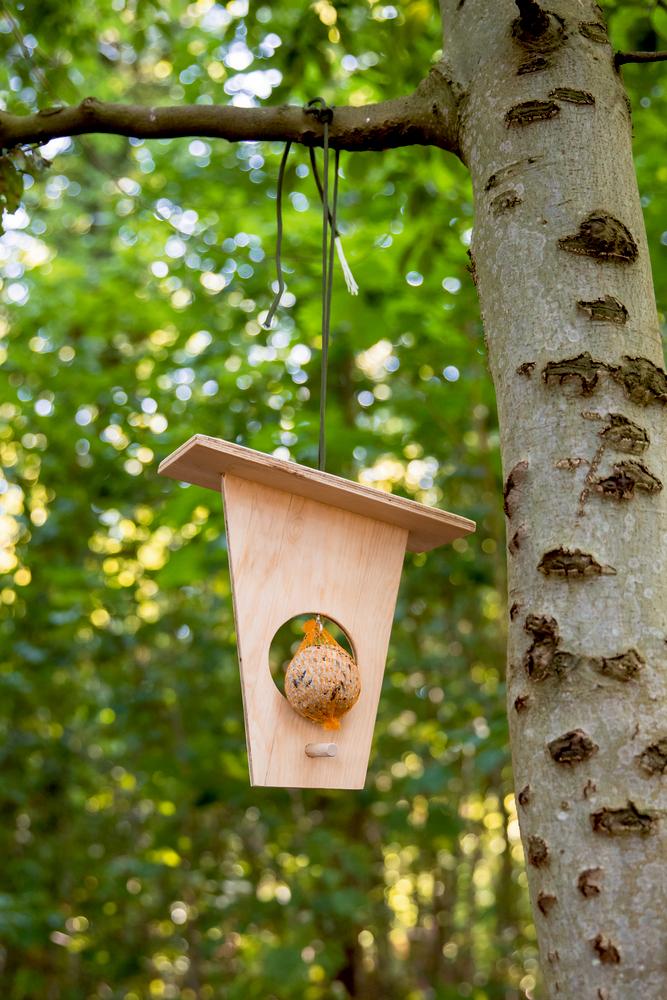 Vogelfutterstation Bausatz Nature Zoom