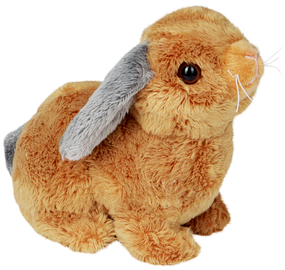Kaninchen Lustige Tierparade