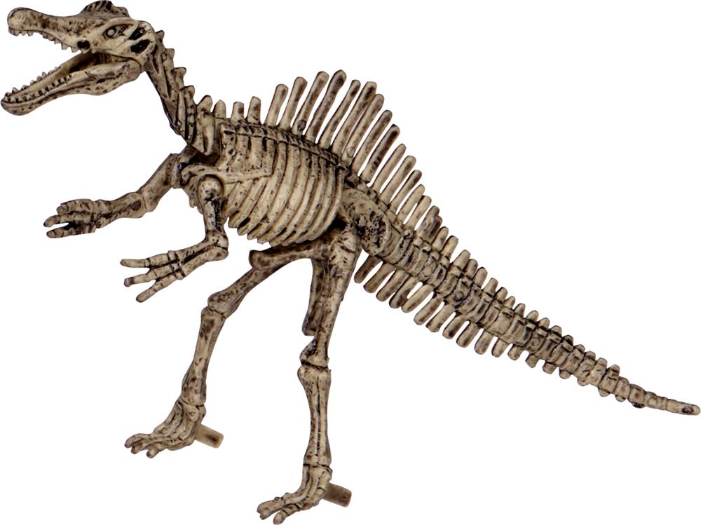 Ausgrabungsset Spinosaurus T-Rex World (ca.19x12x4 cm)