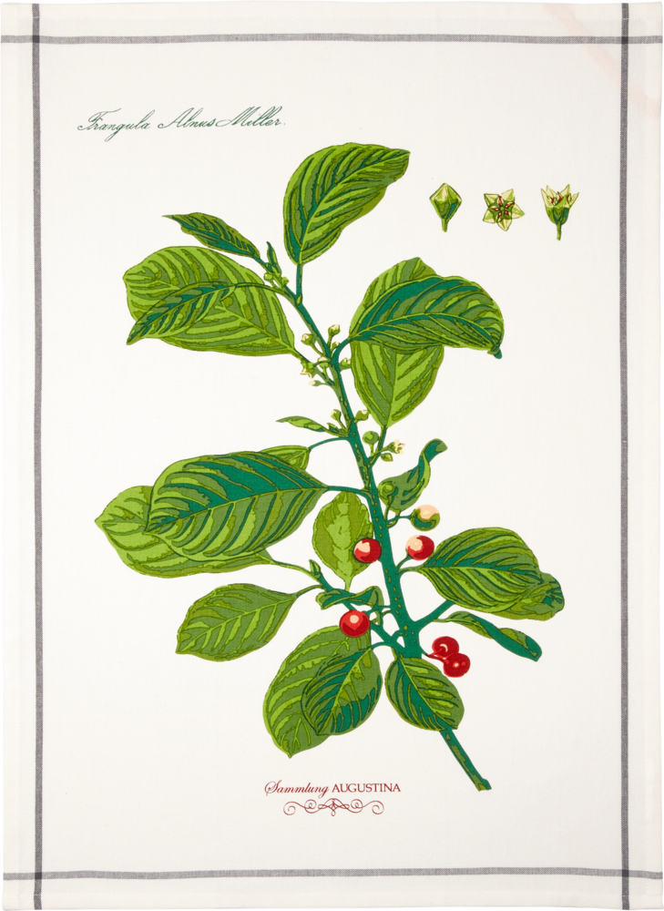 Geschirrtuch weiß/grün Augustina aus Baumwolle