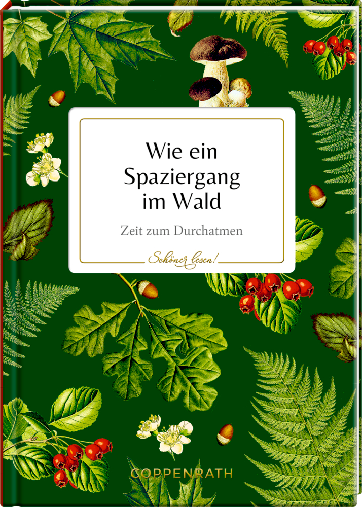 Schöner lesen! No. 18: Wie ein Spaziergang im Wald (Sammlung Augustina)