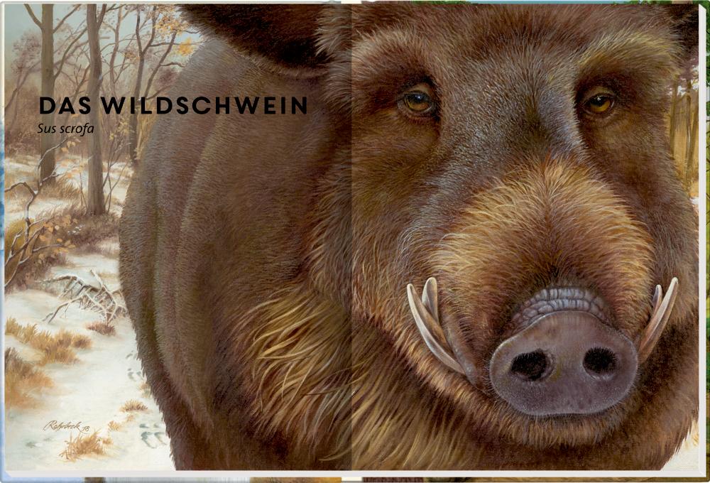 Lebensgroß - Tiere des Waldes (Nature Zoom)