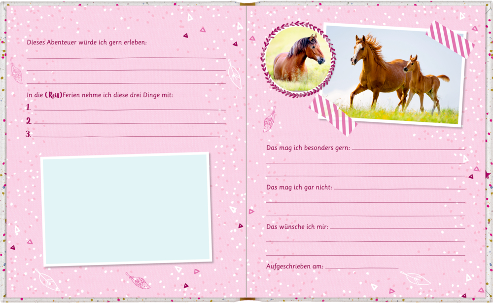 Freundebuch: Pferdefr. Meine Freunde (m. Wendepailletten-P.)