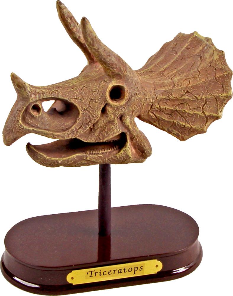 Ausgrabungsset Dinoschädel Triceratops  T-Rex World
