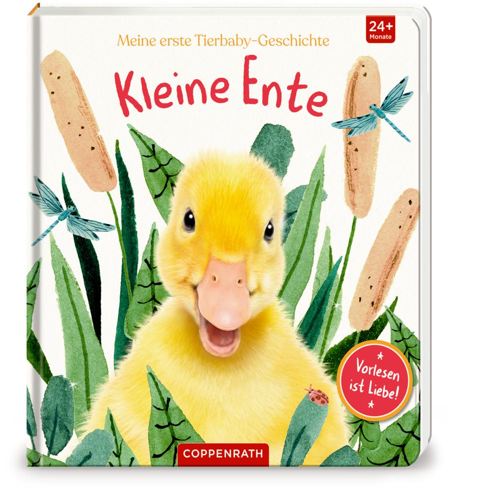Meine erste Tierbaby-Geschichte: Kleine Ente