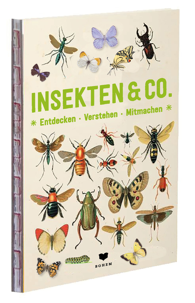 INSEKTEN & Co. - Entdecken-Verstehen-Mitmachen