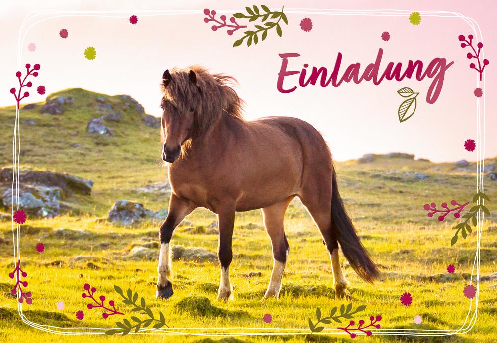 Einladungskarten Pferdefreunde (10 Stück)